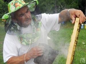 Обработка улья дымом