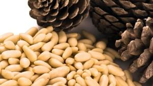 Очищенные кедровые орешки и мед
