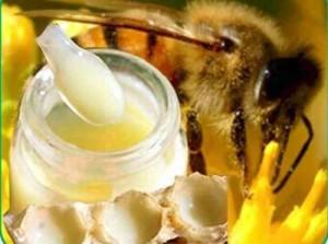 Разбавленное маточное молочко с медом